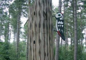 fc woodpecker
